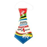 Аксессуары - 6 галстуков болельщика