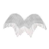 Ангелы и Феи - ангела белое перо