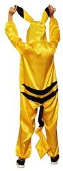 Аниме - Атласный костюм покемона