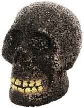 Скелеты и мертвецы - Череп с зубами