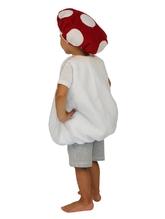Фрукты и ягоды - Детский костюм Грибочка Мухомора