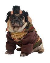 Костюмы для собак - Костюм для собаки Пит Буль