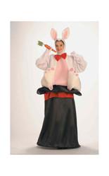 Костюм кролика в шляпе