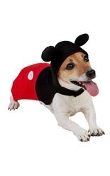 Костюмы для собак - Костюм Микки Мауса для собаки