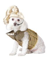 Профессии и униформа - Костюм собаки Поп-королева