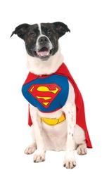 Костюмы для собак - Костюм Супермена собаки