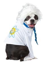Костюмы для собак - Костюм ученого для собаки