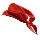 Школьницы и студентки - Красный пионерский галстук