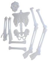 Набор из частей скелета Хэллоуин