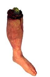 Скелеты и Зомби - Пара оторванных ног