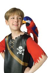 Моряки и морячки - Попугай Кеша