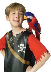 Пиратки - Пернатый попугай