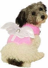 Костюмы для собак - Шлейка с белыми крыльями для собаки