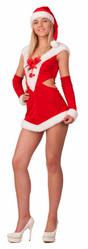 Санта - Взрослый костюм Леди Санты